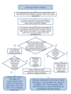 Flow chart - driving licence checks